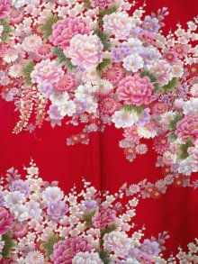 OTHER IMAGES1: FUJIUME - Thousands of Flowers - (WOMEN: Cotton KIMONO)