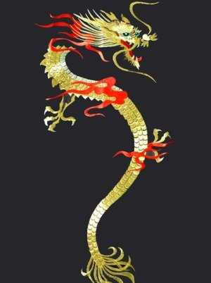 Photo4: KAENRYU - flare Dragon (embroidery) - (MEN: Polyester HAPPI)