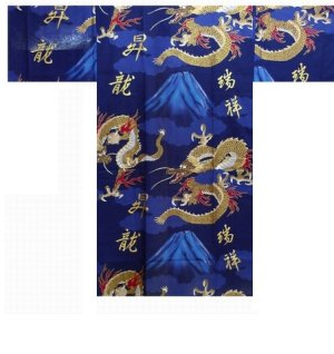Photo1: FUJI RYU - Dragon on Mt.Fuji - (MEN: Cotton HAPPI)